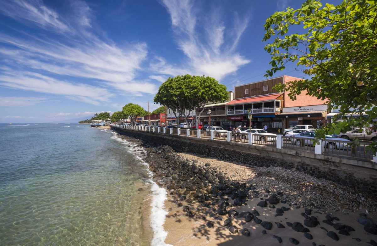Shop and dine at Lahaina Town, Maui and watch the biggest banyan tree in the United States