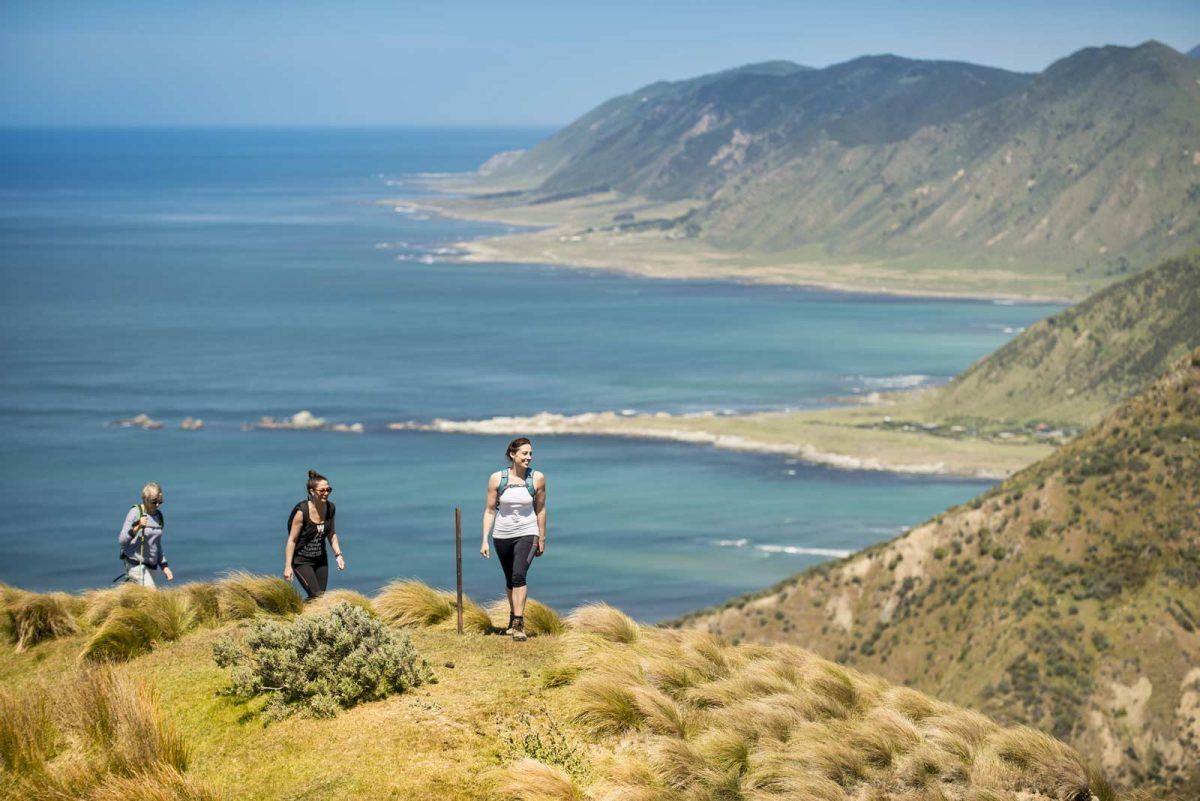 hiking tour Auckland, New Zealand