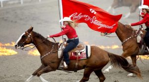 A glimpse of the parade at The Calgary Stampede in Alberta, Canada