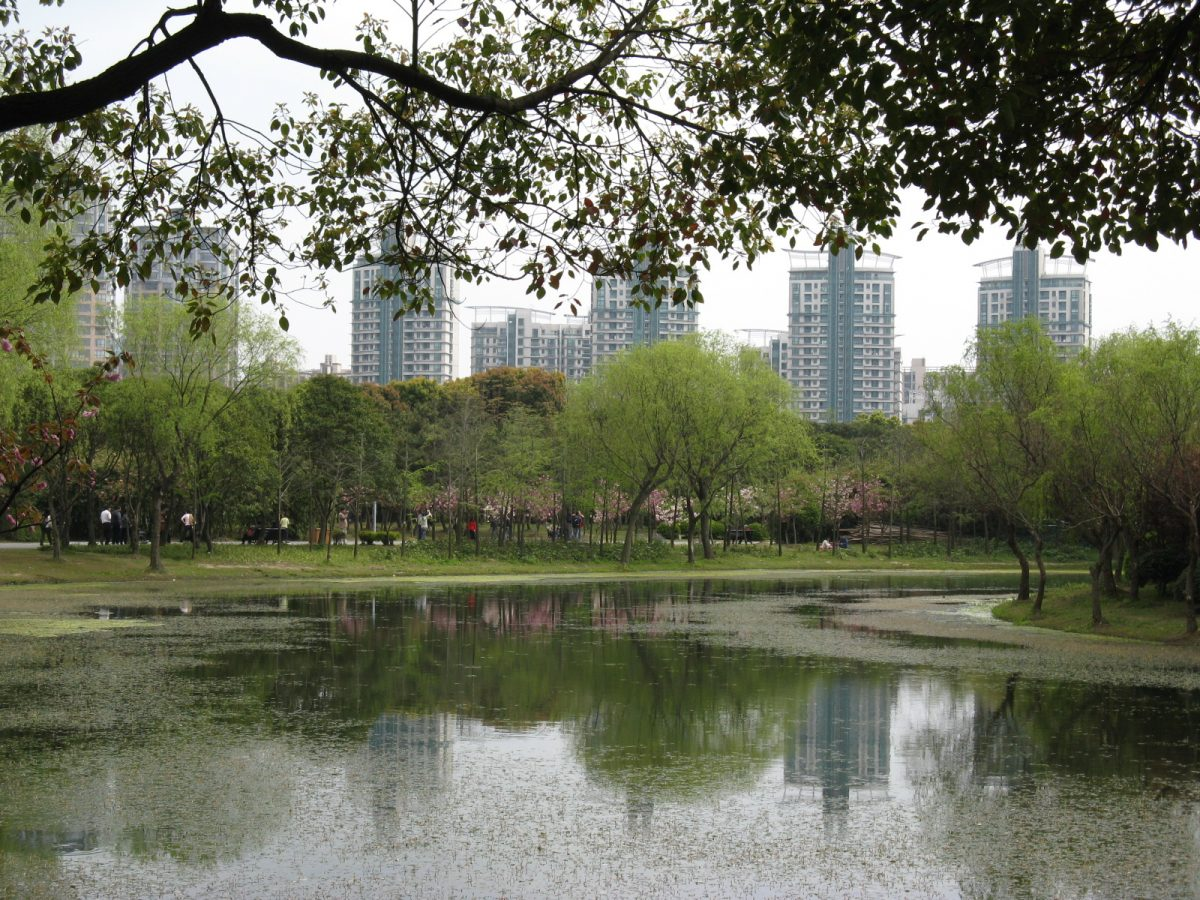 Relaxing sight at Century Park with lush greenery and water body in view