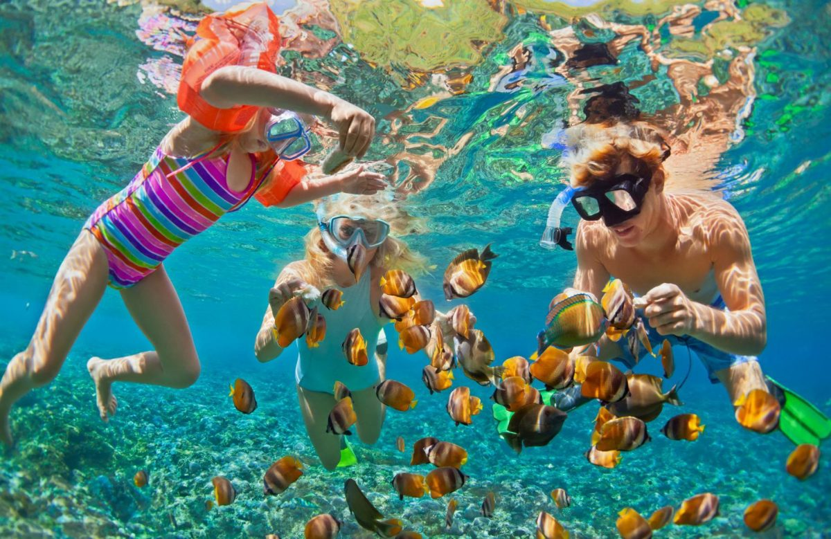 A family Snorkeling in Cancun's seas