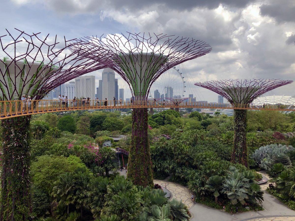 Take a stroll on the Skywalk at Gardens by the Bay, Singapore
