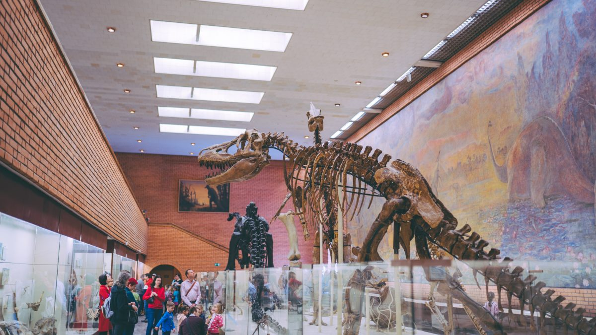 A packed museum with a T-rex skeleton fossil on display