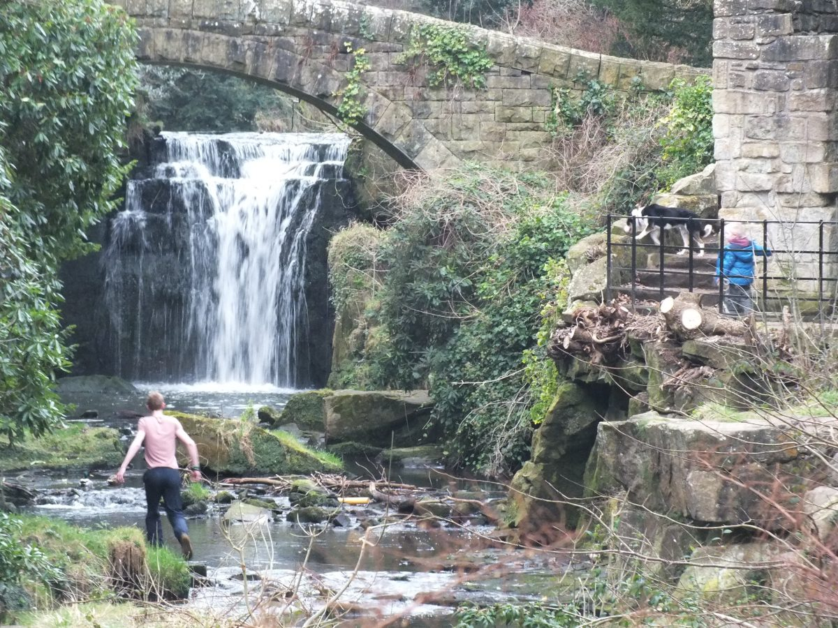 Natural scenery at Jesmond Dene Park as a hiker walks into view