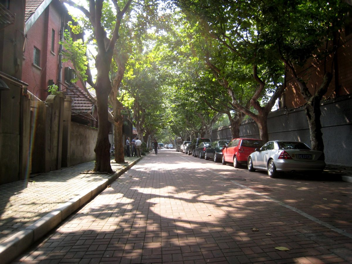 Street view of the Shanghai French Concession with tall trees shielding pedestrians from the morning sun