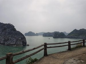The Cat Ba cliff, Halong Bay