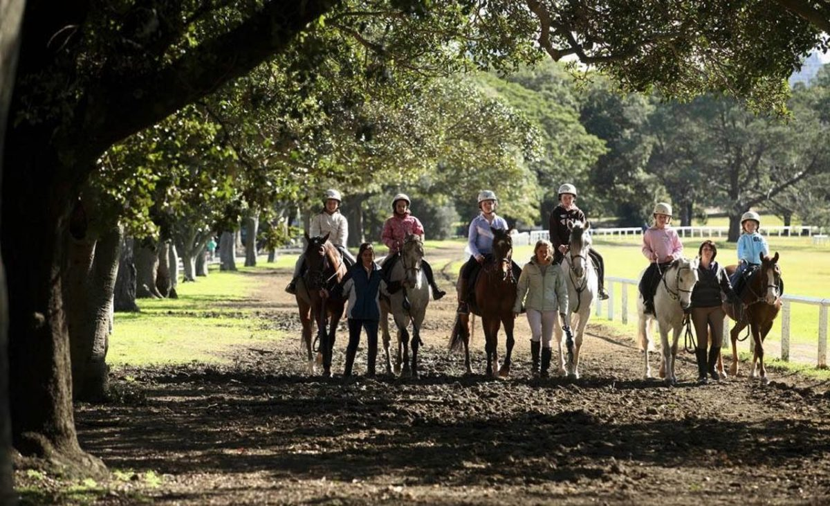 The Centennial Parklands Equestrian Centre is the place to come for a weekend spent on horse-riding activities