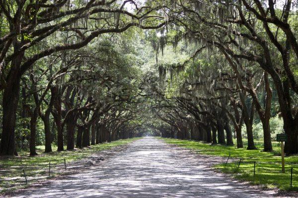 The Best Things To Do In Savannah, Georgia