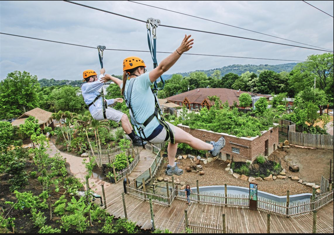 Pittsburgh Zoo offer the chance to launch from the highest point in the zoo, overlooking the Allegheny River and embark on the heart-pumping, adrenaline-rushing journey of your life