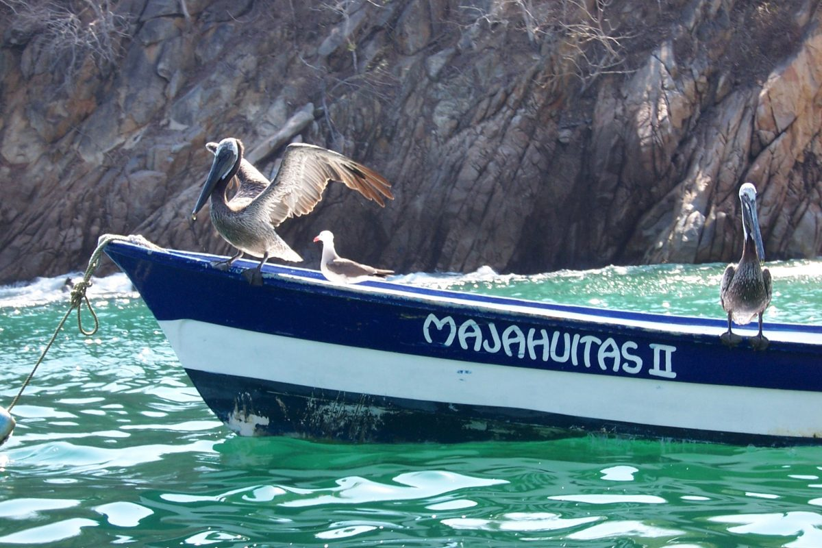 White sand beaches and crystal clear water are what draws visitors to the Majahuitas and Yelapa beaches
