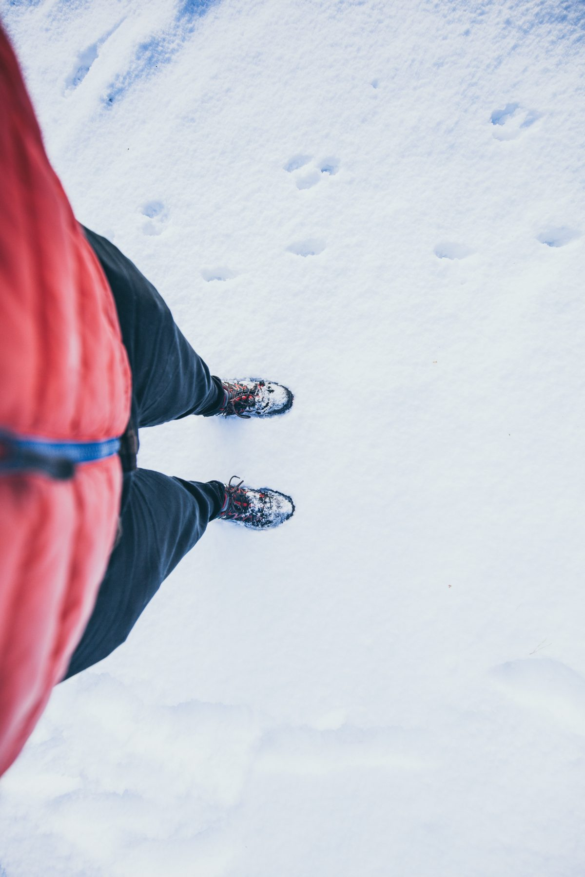 3. Thom Holmes Unsplash - The Best Winter Boots For Your Next Adventure