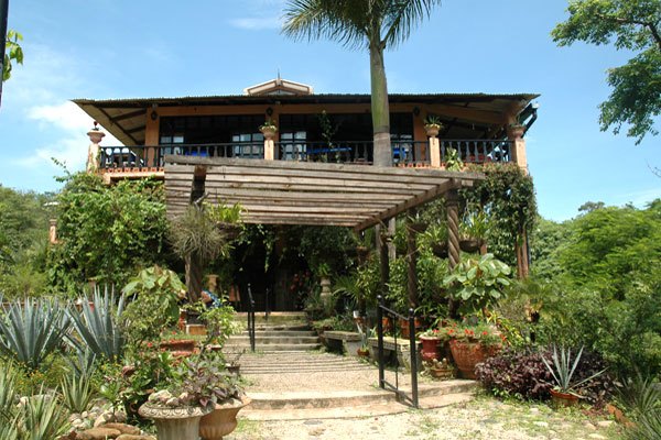Vallarta Botanical Gardens is 64 acres of lush forest and mountain streams, filled with exotic plants, birds and insects