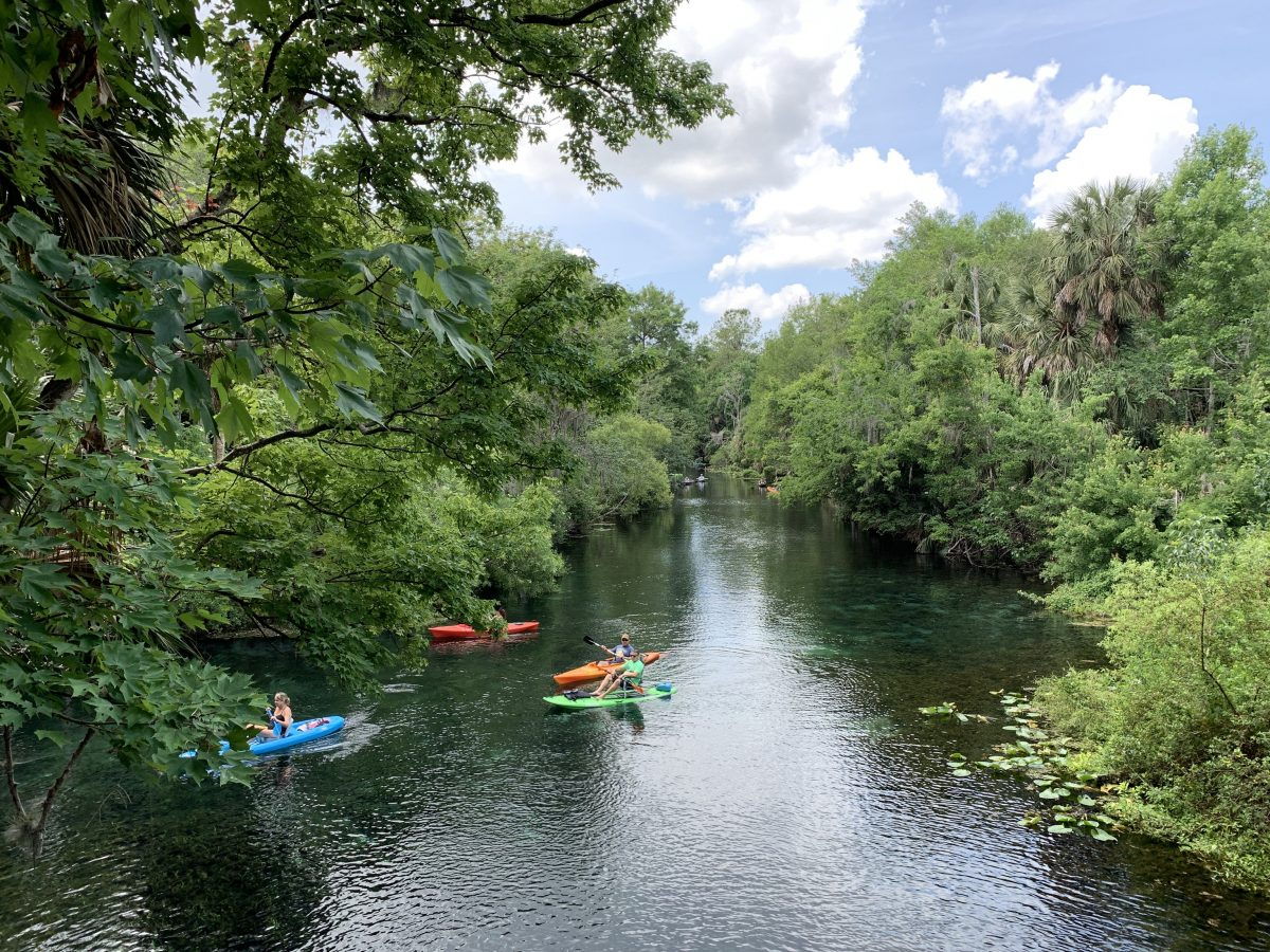 Hillsborough River Tampa