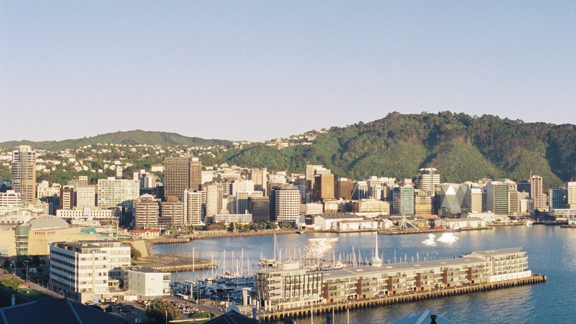 Picturesque view of Wellington's waterfront from Mt Victoria, the best vantage point