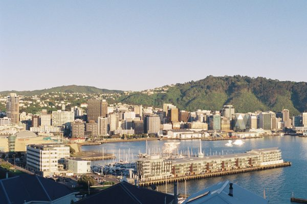 Things To Do In Wellington, New Zealand