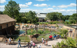 Pittsburgh Zoo, spanning 77 acres of parkland, exhibits more than 4,000 animals of 475 different species, including 20 endangered and threatened species