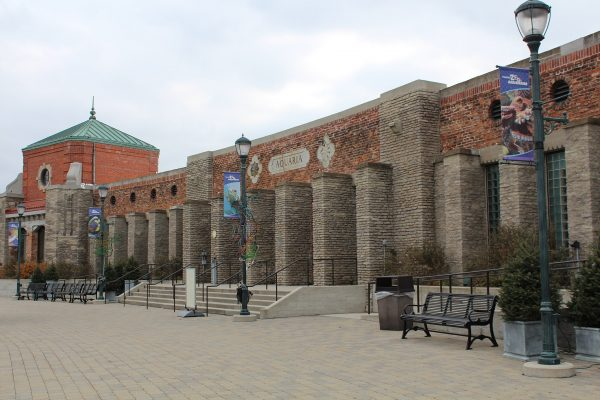 Everything You Need to Know About Toledo Zoo