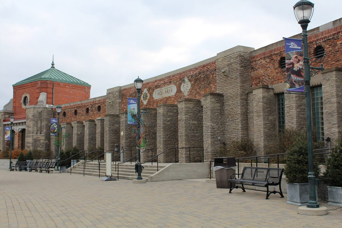 Toledo Zoo has over 10,000 animals representing more than 720 species. The zoo has been recognized as a global leader in wildlife conservation