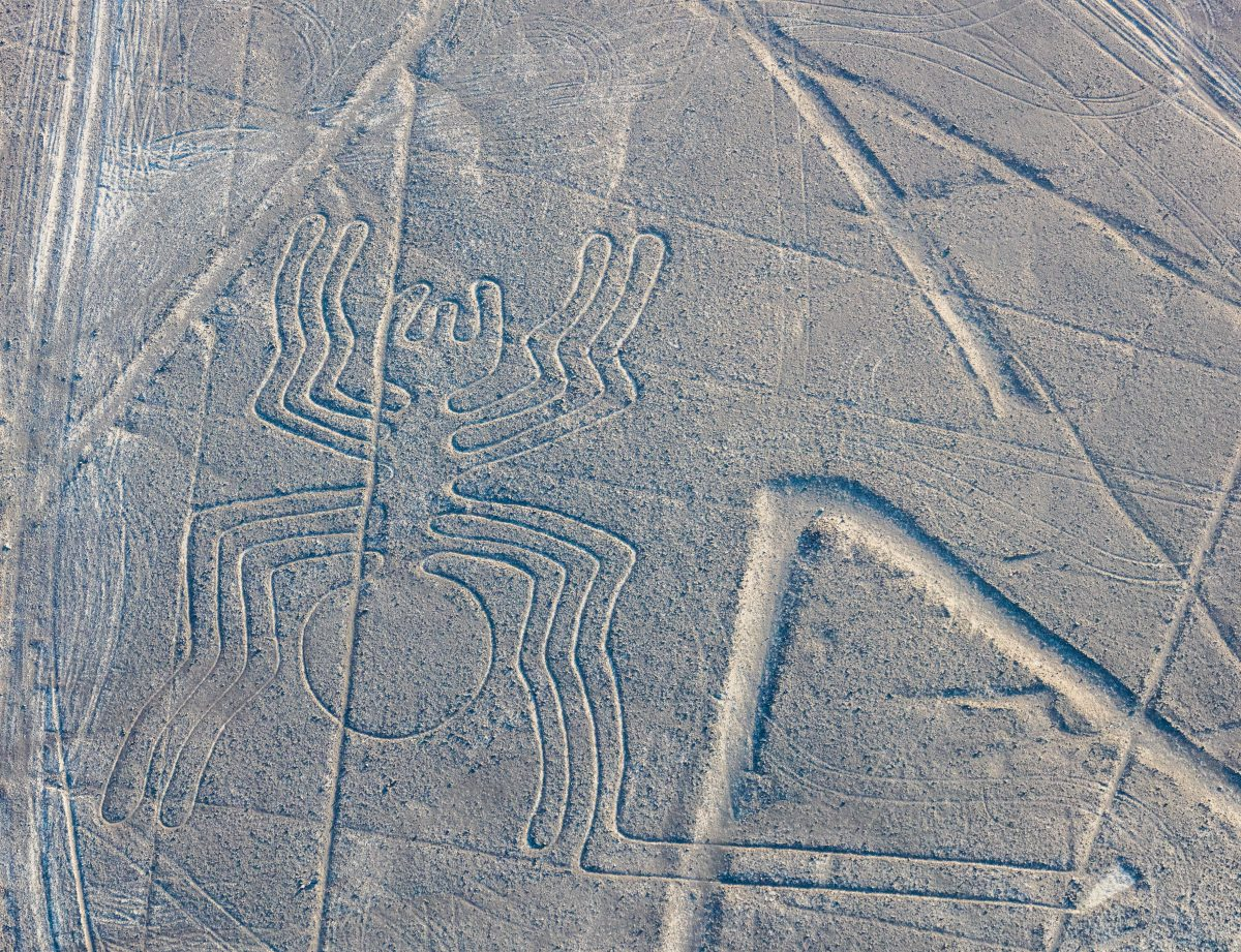 Intricate skyview Nazca Lines in Peru