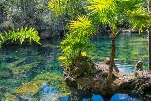 Mexico, Yucatan Cenote, Temazcal, Cozumel