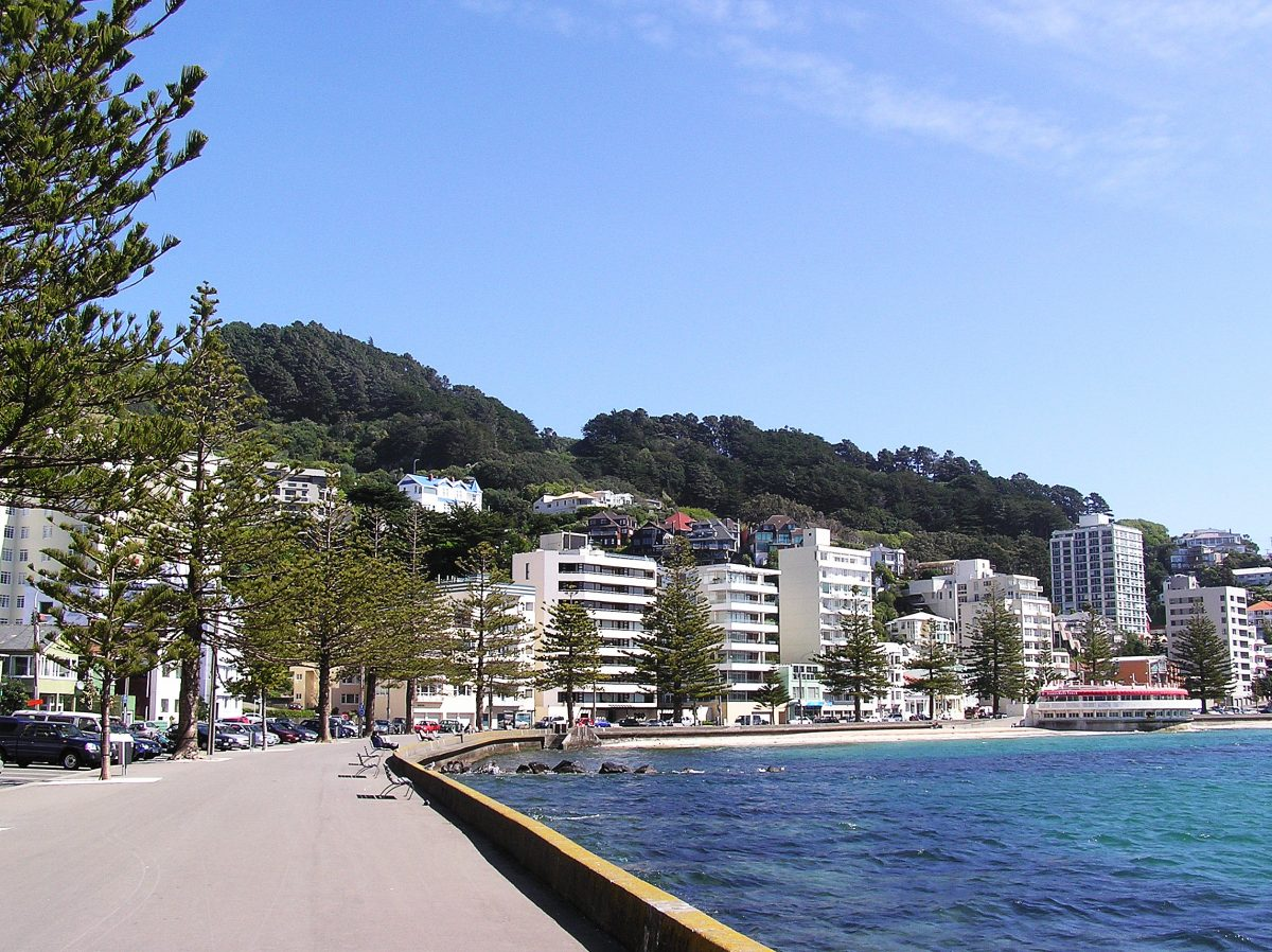 First person view of the Oriental Bay in Wellington during a sunny afternoon