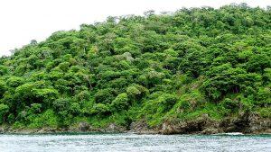 Panama Rainforest Discovery Centre, Panama City