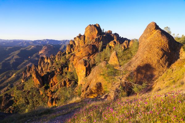 Ultimate Guide To Pinnacles National Park, California