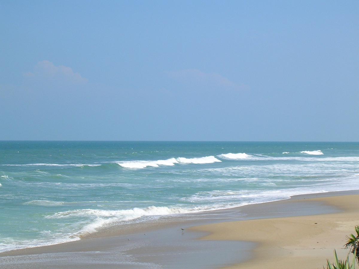 Playalinda Beach - Strip Down At Playalinda Beach, Florida