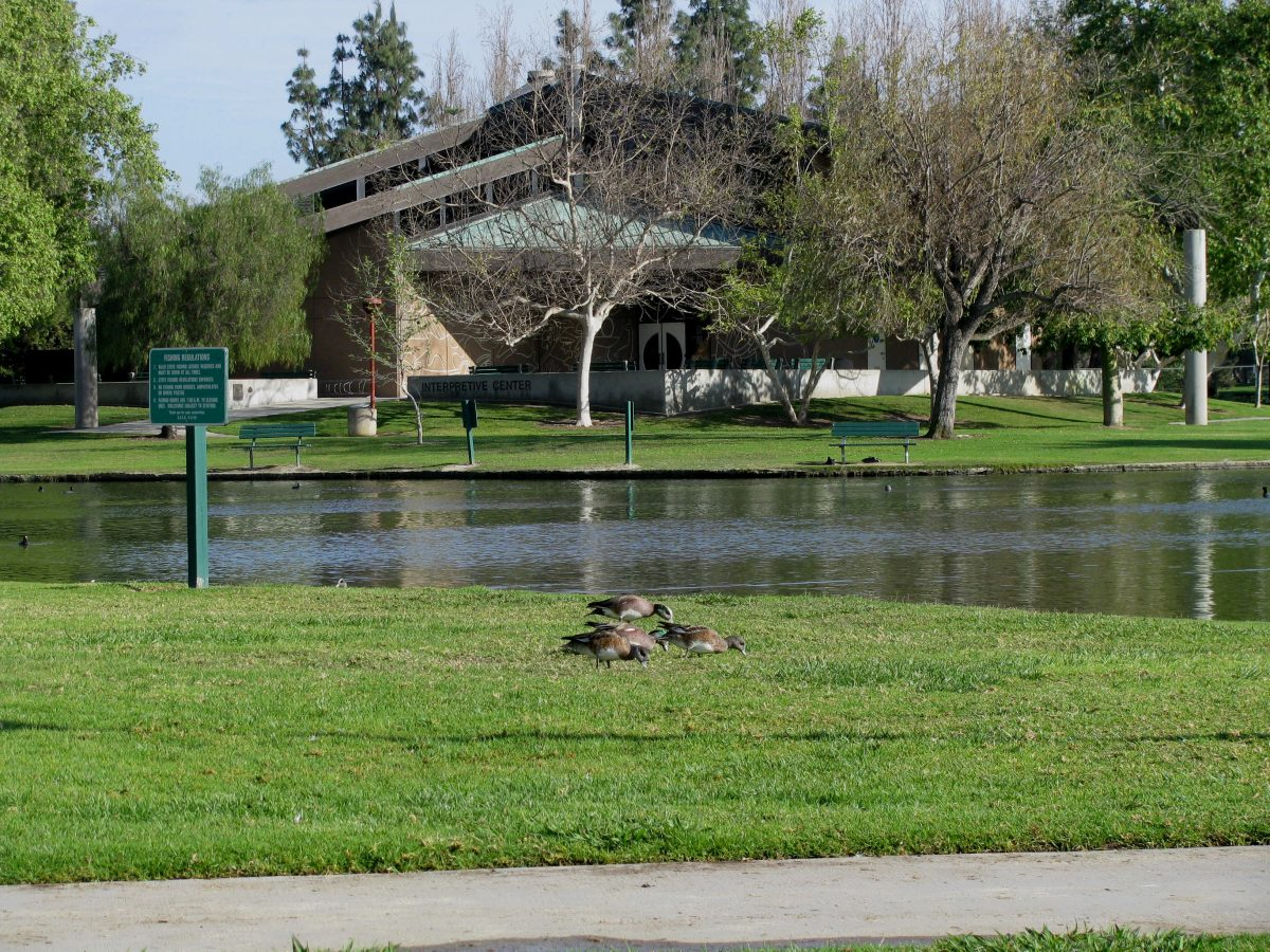 Nestled near the foot of beautiful Coyote Hills, Ralph B. Clark Regional Park offers more than 100 acres of exciting, diverse, and fun activities