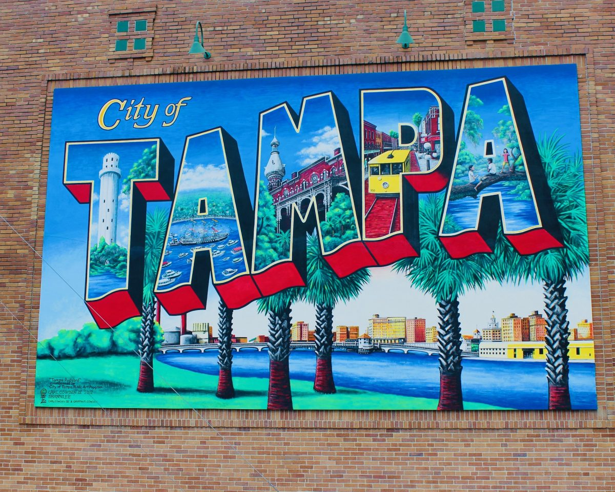 Welcome to Tampa City