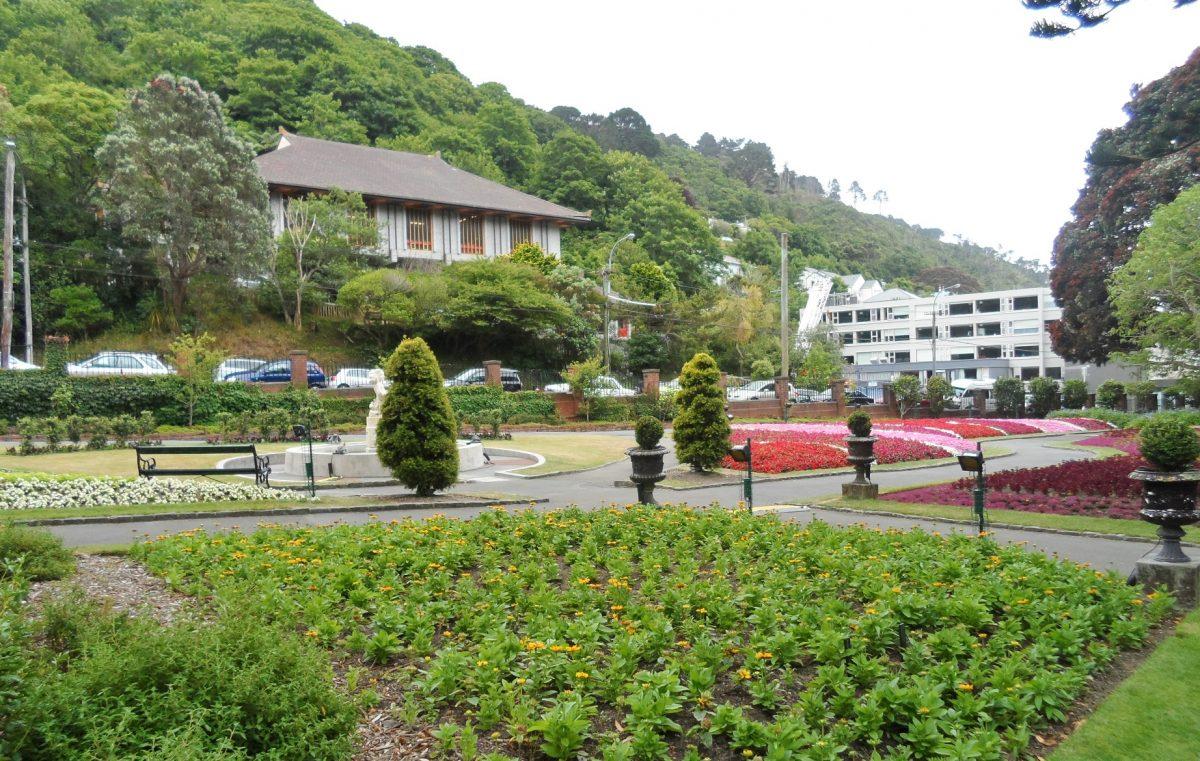 Tranquil scene at the Wellington Botanic Gardens with bright colourful flowers and lush greenery