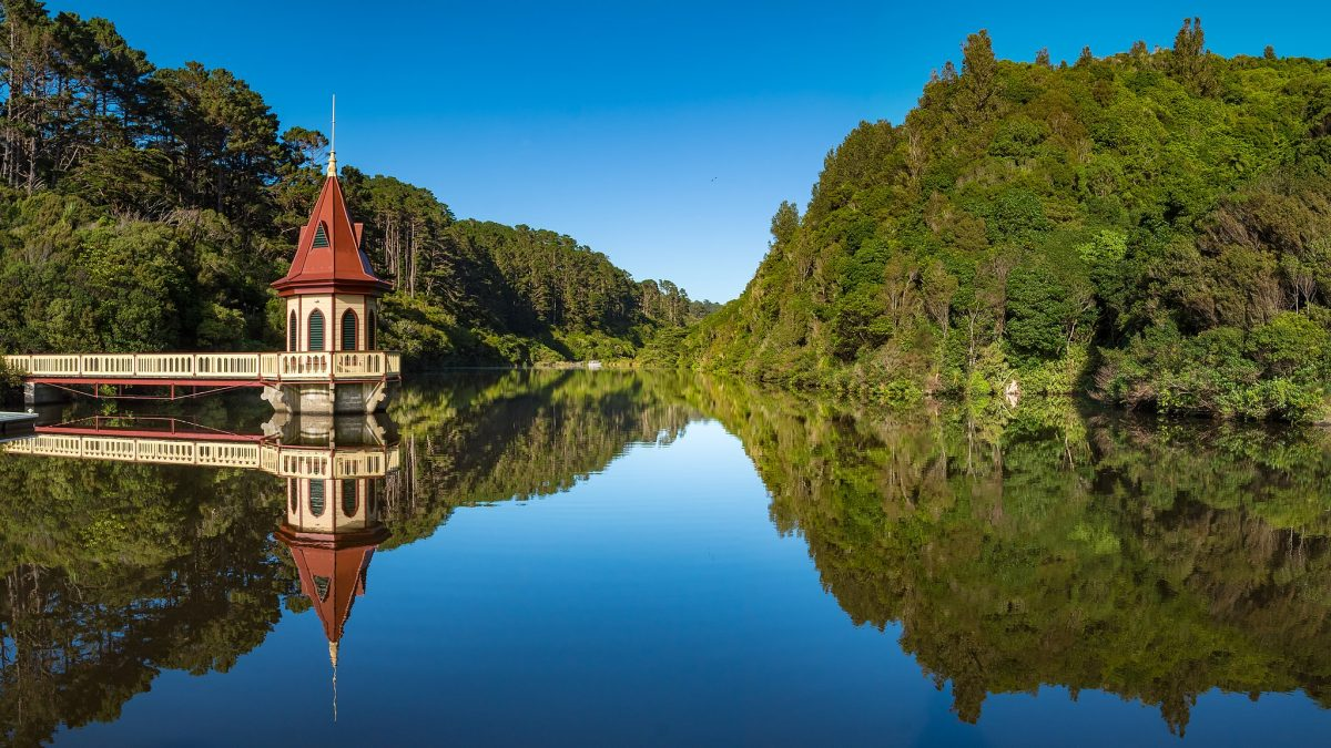 Stunning panoramic view of Zealandia, a conservation project just 10 minutes away from the city centre