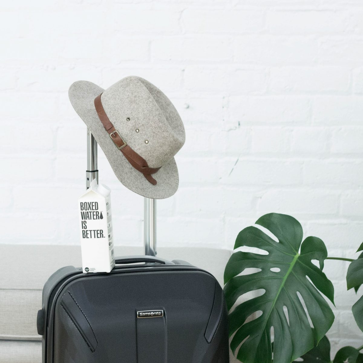 Travel luggage with a hat