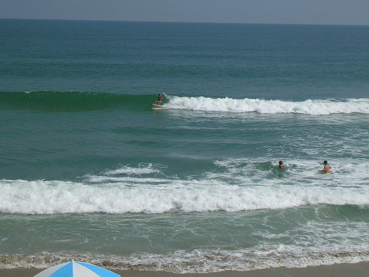 image 3 - Strip Down At Playalinda Beach, Florida