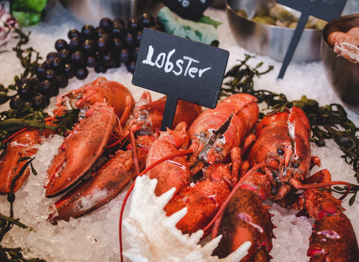 Red poached Lobsters