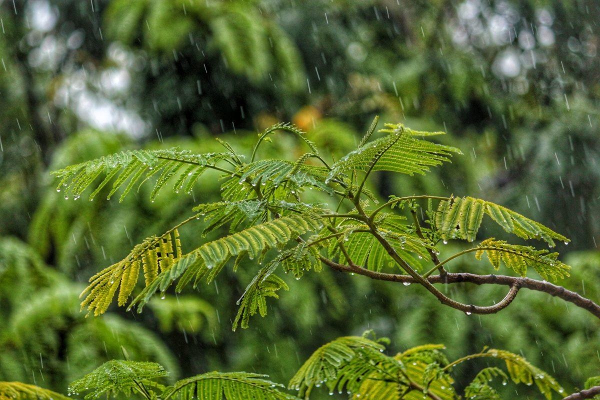 Raining in Bali low season, Indonesia