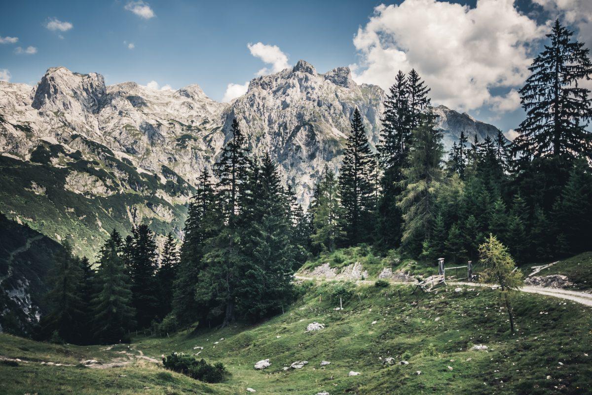 Craggy green mountain track at Gaiseberg Moutain Salzburg