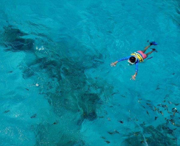 5 Must-Visit Snorkeling Spots In Miami