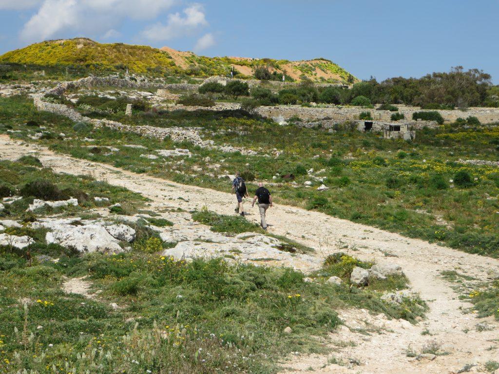 Hike Maltese