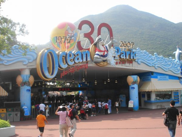 Your Ultimate Guide To Ocean Park, Hong Kong
