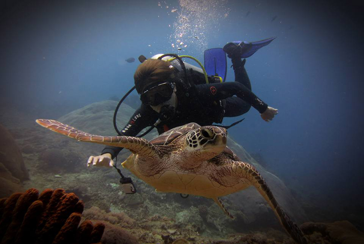 Scuba Diving in Canggu