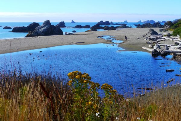 Things To Do In Brookings, Oregon