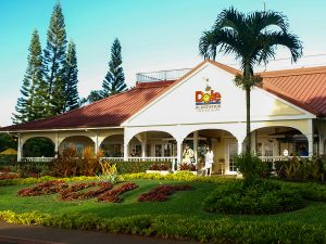 Dole Plantation, Oahu, Hawaii