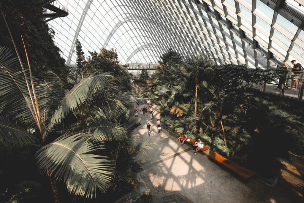 Gardens at Singapore Airport
