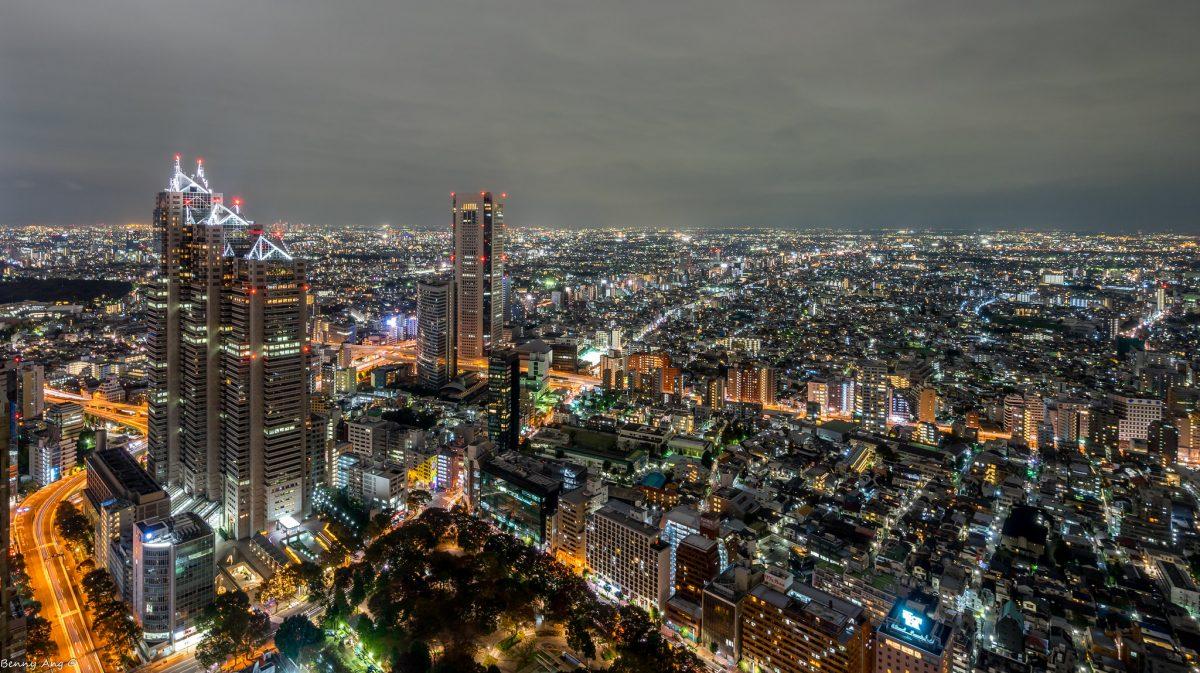 View from Tokyo Metropolitan Government Center in Shinjuku