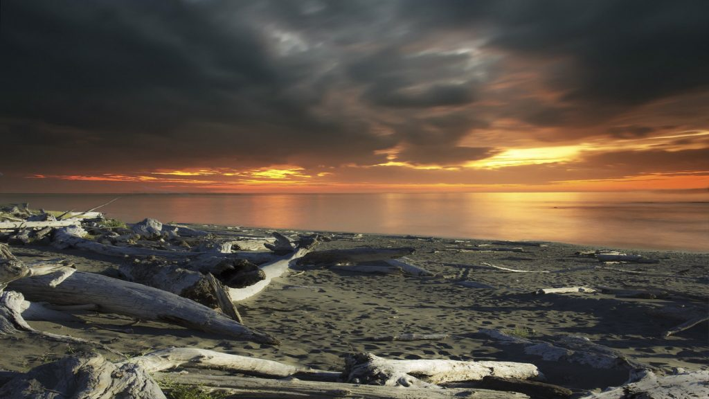 Crissey Field State Recreation Site, Brookings, Oregon