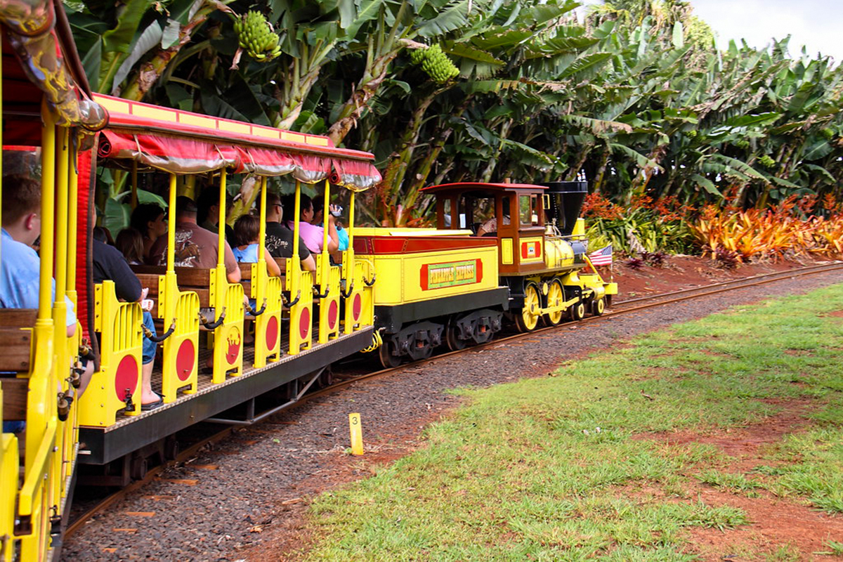 Dole Plantation Train Tour, Dole Plantation, Oahu, Hawaii