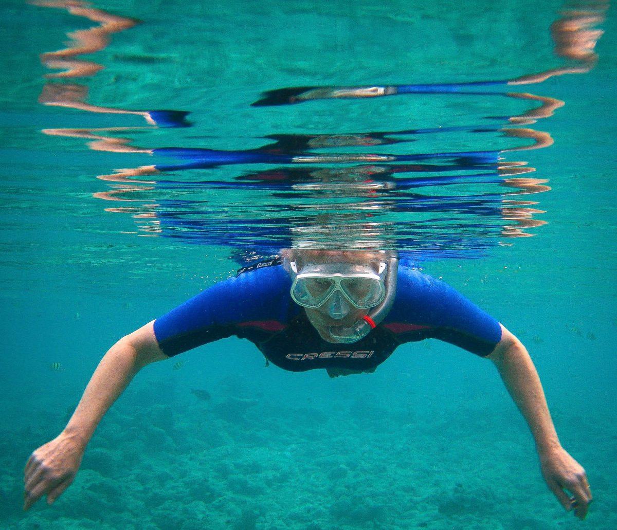 The snorkeller