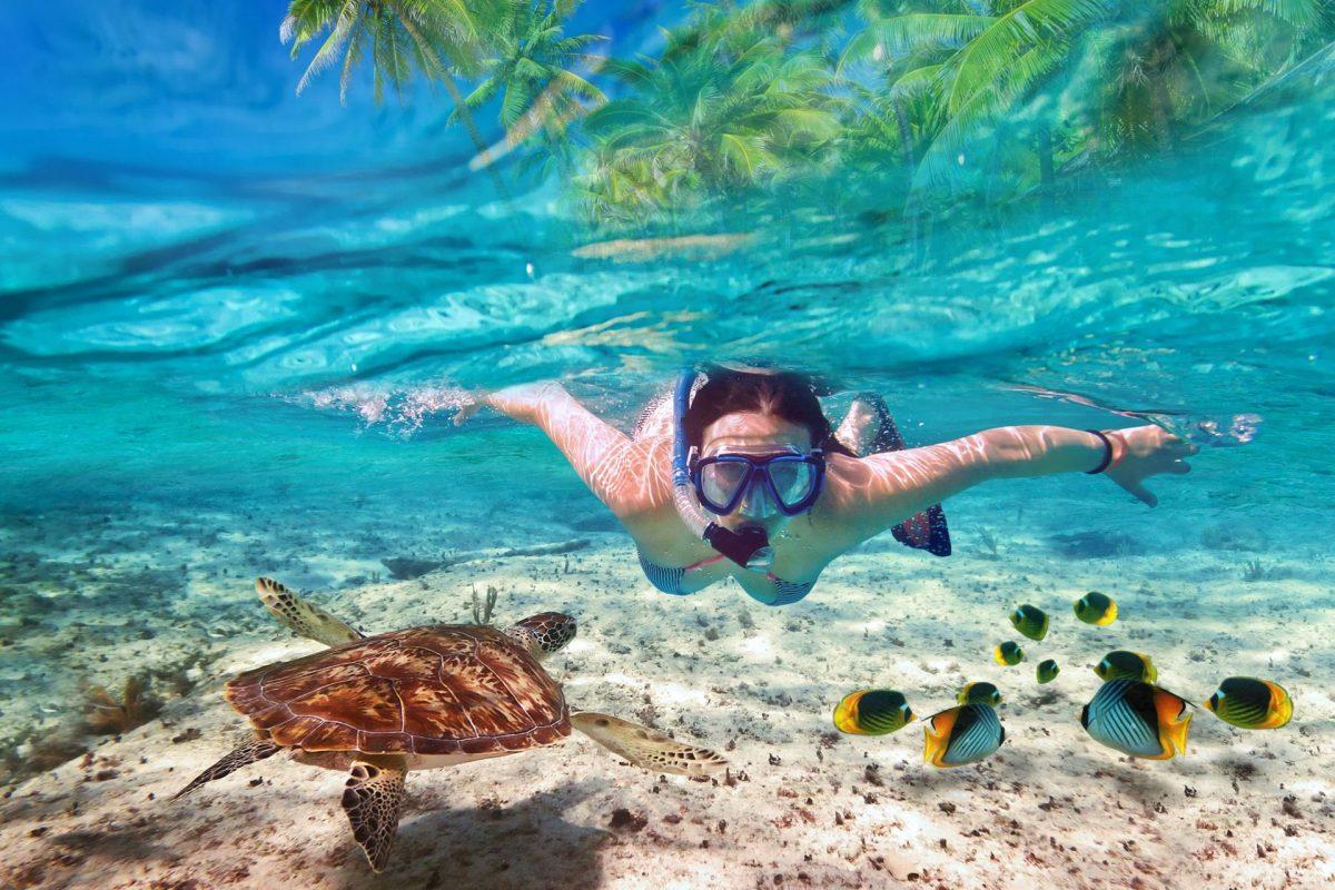 Angthong-National-Marine-Park-snorkeling