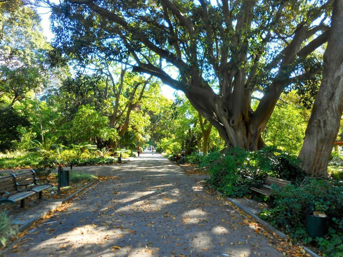 Company's Garden, South Africa Gardens, Nima Lodge, South Africa Tourism